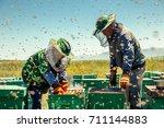 beekeepers collect honey | Shutterstock . vector #711144883