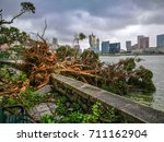 the huge trees uprooted when... | Shutterstock . vector #711162904