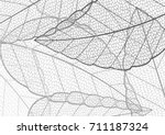 halftone black and white leaf... | Shutterstock .eps vector #711187324