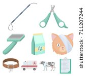 vet clinic. treatment of sick... | Shutterstock .eps vector #711207244