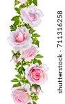 vertical floral border. pattern ... | Shutterstock . vector #711316258