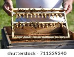 beekeeper takes care of  bees. | Shutterstock . vector #711339340