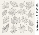 hand drawn leafs set. vector... | Shutterstock .eps vector #711380320