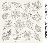 hand drawn leafs set. vector... | Shutterstock .eps vector #711380320