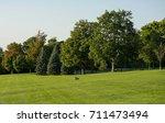 a rock in a green park | Shutterstock . vector #711473494