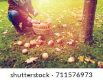 farming  gardening  harvesting... | Shutterstock . vector #711576973