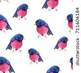 pattern of blue and pink birds... | Shutterstock . vector #711606184