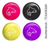 dolphin multi color glossy...