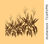 Corn Field Illustrations With...