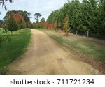 rural driveway in fall | Shutterstock . vector #711721234