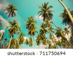 beautiful coconut palm trees... | Shutterstock . vector #711750694