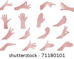 illustration hands set of the... | Shutterstock . vector #71180101