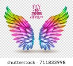 pair of colorful bird wings set ... | Shutterstock . vector #711833998