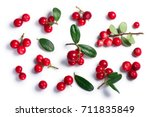 Lingonberry  Fruits Of...