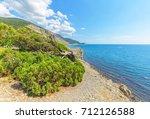juniper  reserve on the black... | Shutterstock . vector #712126588