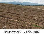field with stones | Shutterstock . vector #712220089