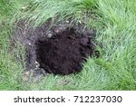 filling the planting hole with... | Shutterstock . vector #712237030