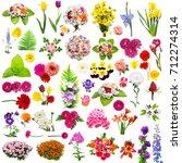 creative collection flower set... | Shutterstock . vector #712274314