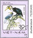 Small photo of VIETNAM - CIRCA 1977: A stamp printed in Vietnam shows Aceros undulatus or wreathed hornbill, series is devoted to rare birds, circa 1977