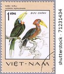 Small photo of VIETNAM - CIRCA 1977: A stamp printed in Vietnam shows Aceros nipalensis or rufous-necked hornbill, series is devoted to rare birds, circa 1977
