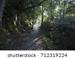 stone path road in the forest | Shutterstock . vector #712319224