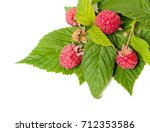 berries and leaves of raspberry ... | Shutterstock . vector #712353586