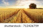 tree and wheat field | Shutterstock . vector #712426759