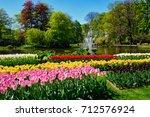 blooming tulips flowerbeds in... | Shutterstock . vector #712576924