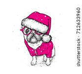 cute puppy in a new year hat... | Shutterstock .eps vector #712633960