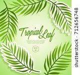set of tropical leaves   vector ... | Shutterstock .eps vector #712656748