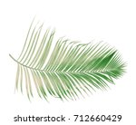 concept summer with green palm... | Shutterstock . vector #712660429