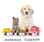 Stock photo golden retriever and a licking kitten with food for pets isolated on white background 712669399