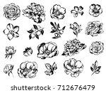 flower set | Shutterstock . vector #712676479