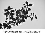 nature | Shutterstock . vector #712681576