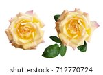 closeup of yellow rose flowers... | Shutterstock . vector #712770724