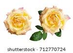 Closeup Of Yellow Rose Flowers...