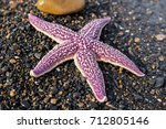 a lilac starfish lies on black... | Shutterstock . vector #712805146