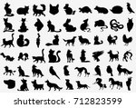 big vector collection of... | Shutterstock .eps vector #712823599