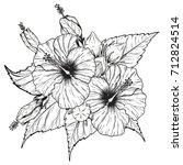 hibiscus flower vector by hand... | Shutterstock .eps vector #712824514