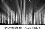 foggy spruce forest in the... | Shutterstock . vector #712845376