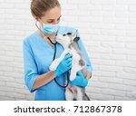 professional female vet holding ... | Shutterstock . vector #712867378
