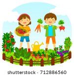 two kids picking vegetables in... | Shutterstock . vector #712886560
