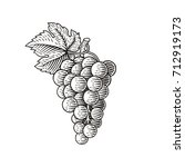 Grapes. Hand Drawn Engraving...