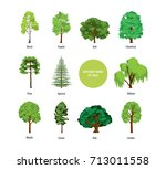 collection of different kinds... | Shutterstock .eps vector #713011558
