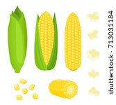 bright vector collection of... | Shutterstock .eps vector #713031184