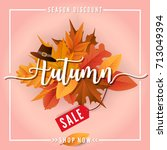 autumn sale square banner... | Shutterstock .eps vector #713049394