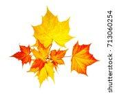 autumn maple leaves.foliage... | Shutterstock . vector #713060254