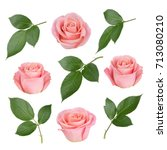set with pink roses and leaves. ... | Shutterstock . vector #713080210