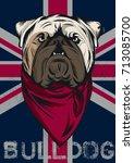 english bulldog portrait...   Shutterstock .eps vector #713085700