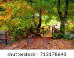 autumn landscape. wooden bridge ...   Shutterstock . vector #713178643